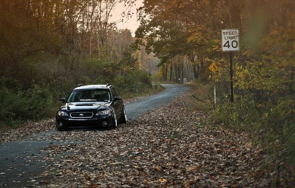 Картинка осень, Subaru, black, субару, stance, Outback