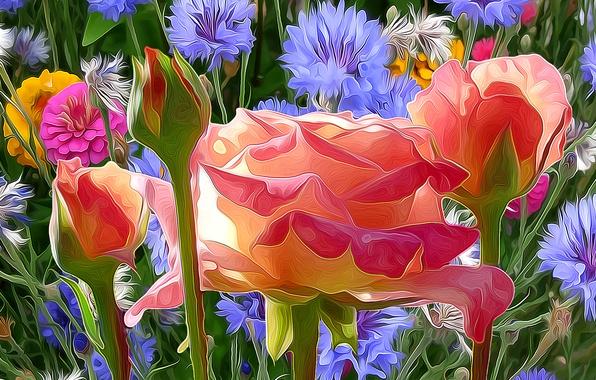 Обои линии, цветы, природа, краски, лепестки, луг, штрих