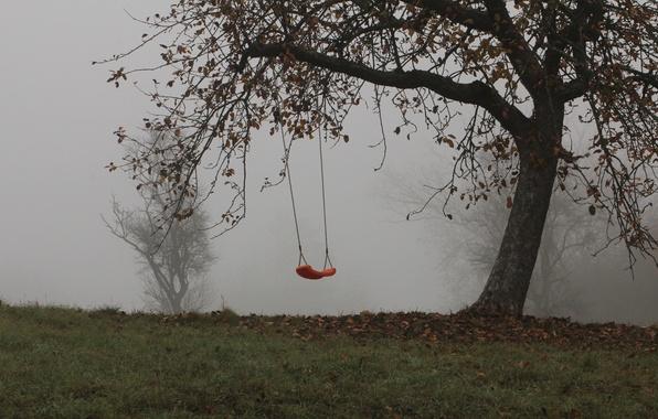 Картинка деревья, туман, качели, Осень, trees, autumn, fog, swing, mist