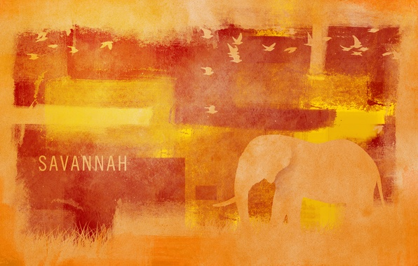 Картинка трава, птицы, стиль, узоры, краски, слон, colors, саванна, grass, style, patterns, 1920x1200, birds, elephant, savannah