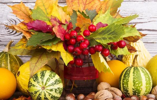 Фото обои fruits, leaves, autumn, листья, ягоды, орехи, тыква, nuts, урожай, still life, осень, harvest, pumpkin