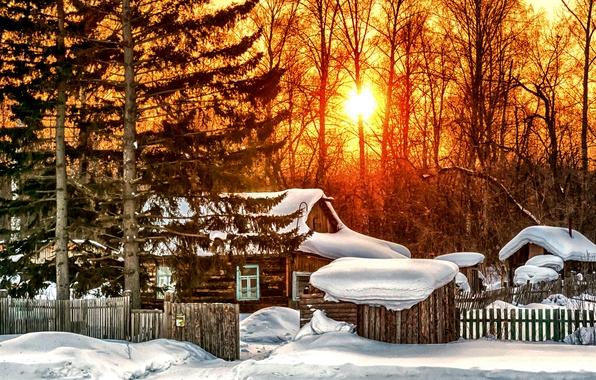 Картинка зима, лес, солнце, снег, деревья, закат, дом, забор, сугробы, изба