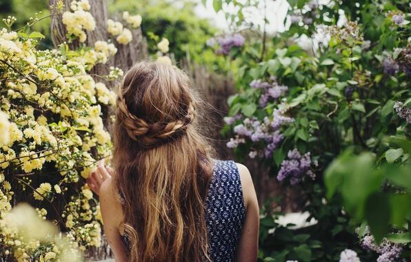 Картинка девушка, волосы, сирень