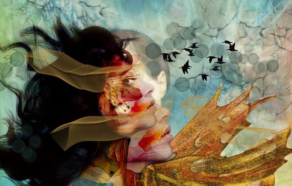 Картинка птицы, лицо, фон, цвет