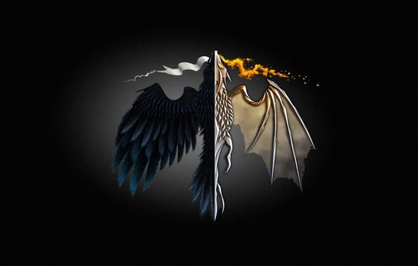Картинка огонь, дракон, минимализм, minimalism, Game of Thrones, Игра престолов
