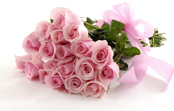 Картинка розы, Цветы, лента