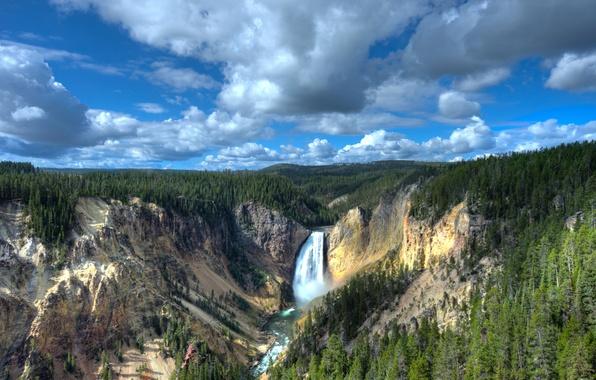 Картинка лес, пейзаж, природа, скалы, водопад, каньон, Wyoming, национальный парк, USА, Yellowstone Lower Falls