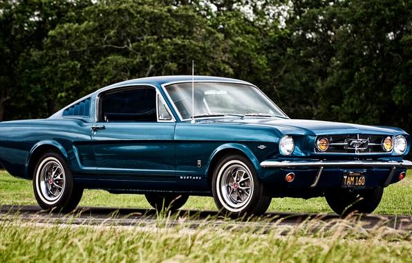 Картинка Mustang, Ford, мустанг, форд, 1965, Fastback