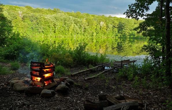 Картинка лес, природа, озеро, берег, костер