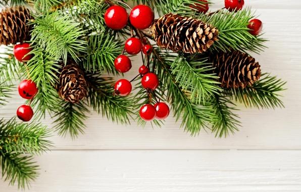 Картинка ветки, ягоды, фон, праздник, Новый год, хвоя, шишки