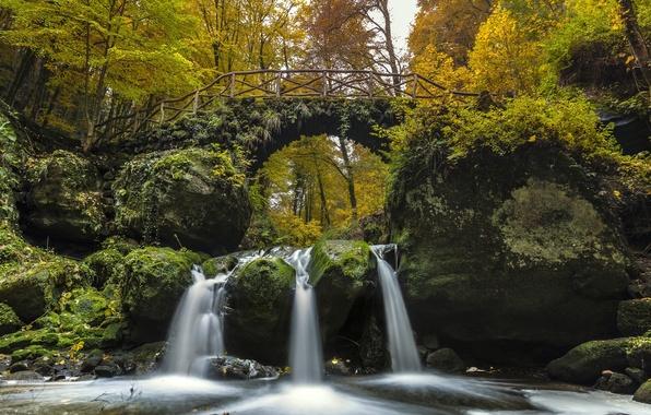Картинка осень, лес, мост, река, водопад, каскад, Люксембург, Luxembourg, река Чёрный Эрнц, Black Ernz river, Мюллерталь, …