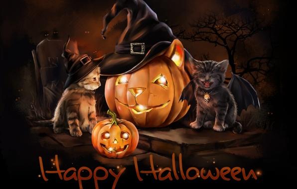 Картинка ночь, праздник, крылья, шляпа, арт, котята, тыква, Хэллоуин, детская, lorri kajenna
