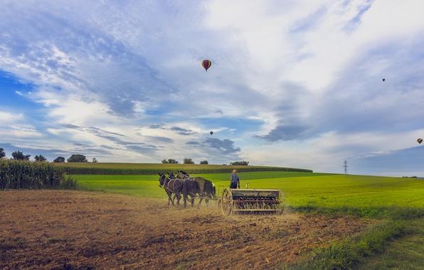 Картинка небо, пейзаж, шары, спорт