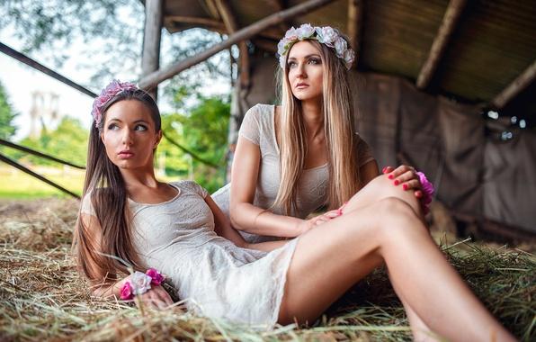 Картинка две девушки, Sisters, на сене, Vita Vecera