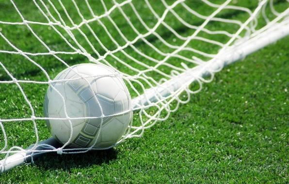 Картинка трава, сетка, газон, футбол, мяч, ворота, гол