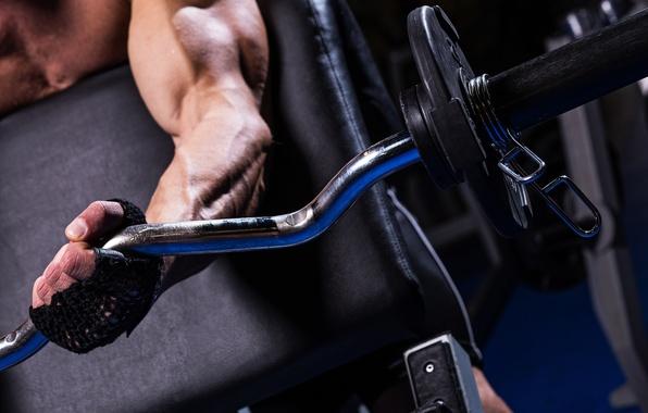 Картинка man, weightlifting, bodybuilder, muscular arms