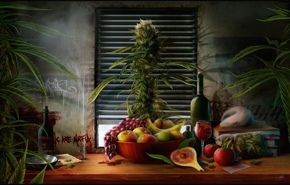 Картинка трава, стол, вино, яблоки, книги, куст, бутылка, пакет, окно, тарелка, виноград, натюрморт, банан, груши, крыса, ...