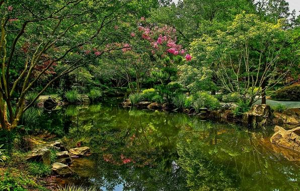 Картинка фото, Природа, Пруд, Кусты, Парк, США, Gibbs Gardens