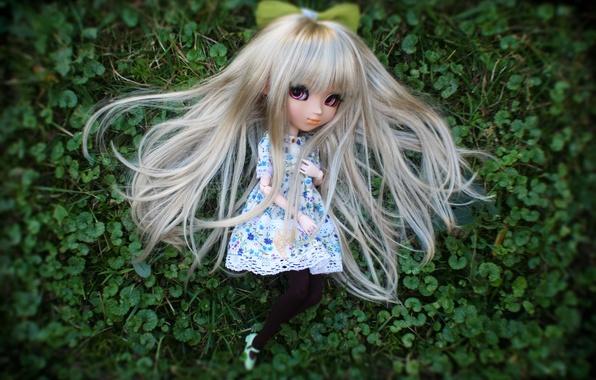 Картинка трава, кукла, длинные волосы