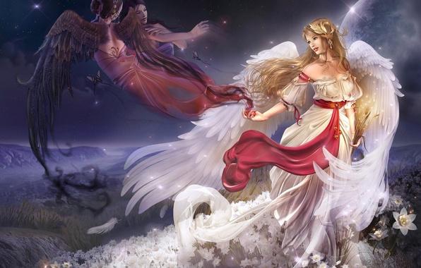 Картинка девушка, цветы, крылья, ангел