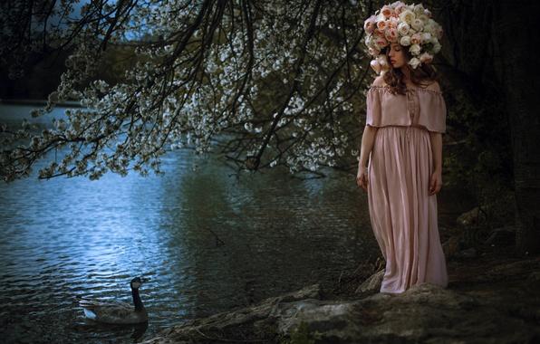 Картинка девушка, цветы, природа, озеро, платье, утка