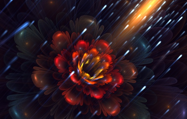 Картинка цветок, светлячки, лепестки, арт, фрактал