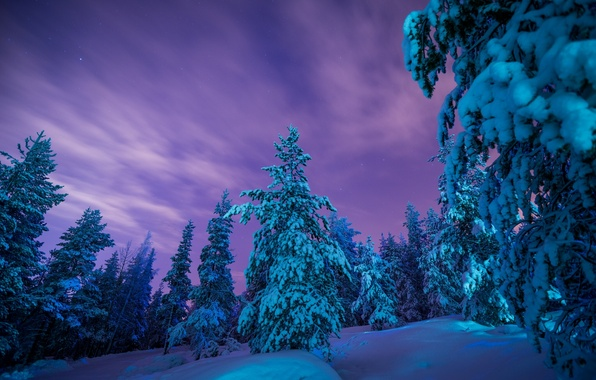 Картинка зима, лес, снег, деревья, сугробы, Финляндия, Finland, Lapland, Лапландия