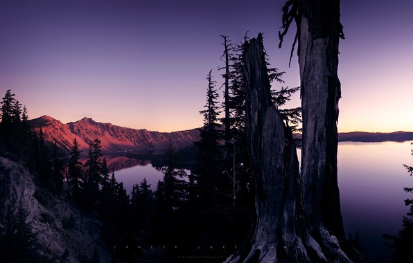 Картинка деревья, закат, горы, озеро