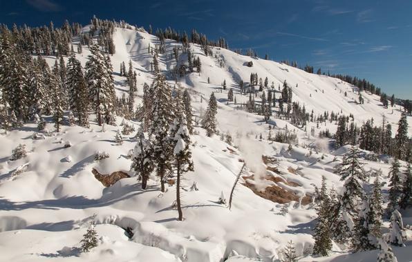 Картинка зима, небо, солнце, снег, деревья, гора, склон, Калифорния, пар, США, California, Lassen Volcanic National Park, …