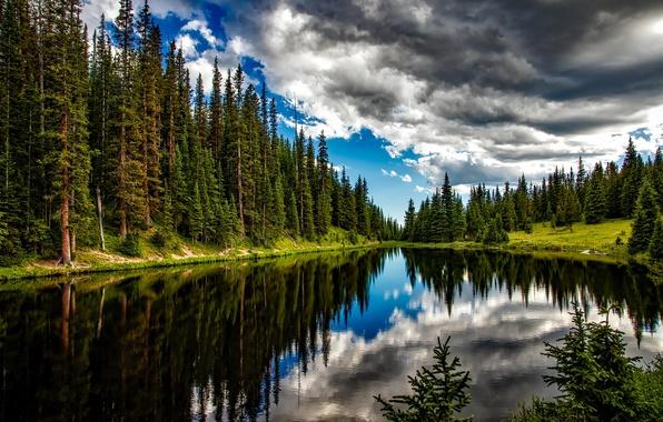 Картинка лес, лето, вода, облака, деревья, озеро, отражение