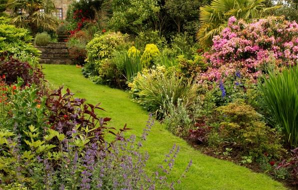 Картинка зелень, трава, цветы, дом, парк, дорожка, Великобритания, ступеньки, кусты, Mount Pleasant gardens