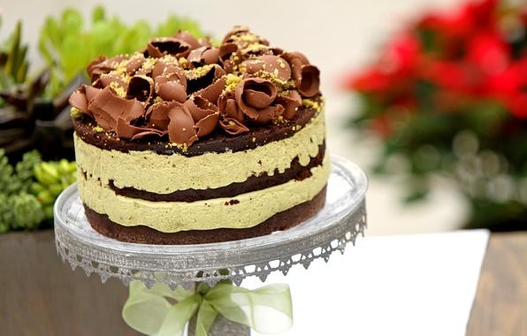 Картинка сладость, еда, шоколад, торт, крем, десерт, вкусно