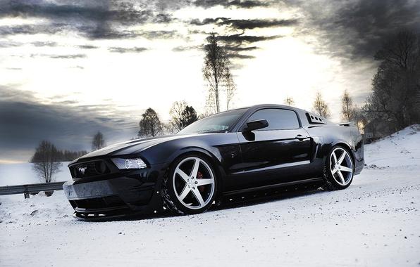 Картинка зима, небо, снег, деревья, тучи, чёрный, mustang, мустанг, wheels, ford, диски, black, форд, вид сбоку, …