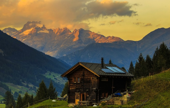 Картинка трава, деревья, горы, Швейцария, склон, Альпы, домик
