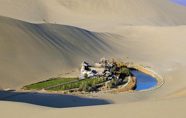 Картинка песок, трава, деревья, пруд, пустыня, пагода, оазис