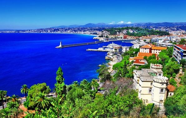 Картинка море, деревья, пейзаж, горы, скала, камни, пальмы, побережье, Франция, маяк, дома, панорама, Ницца, Nice