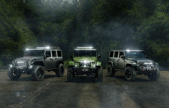 Картинка car, джип, внедорожник, jeep, wrangler, hq wallpaper, William Stern