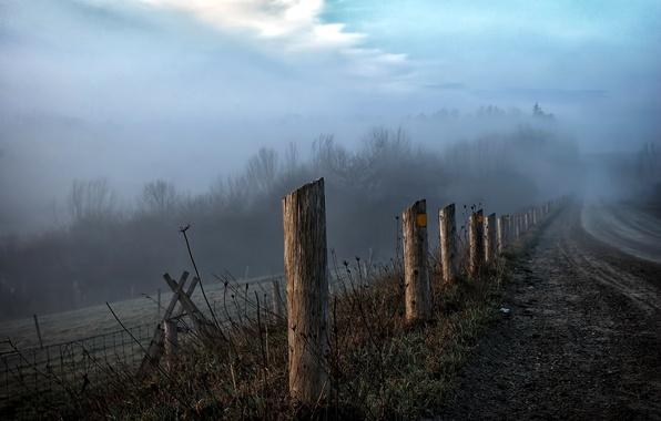 Картинка дорога, пейзаж, туман, забор, утро