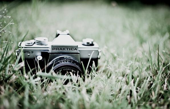 Картинка зелень, трава, макро, природа, фото, фон, обои, фотоаппарат, объектив, Praktica
