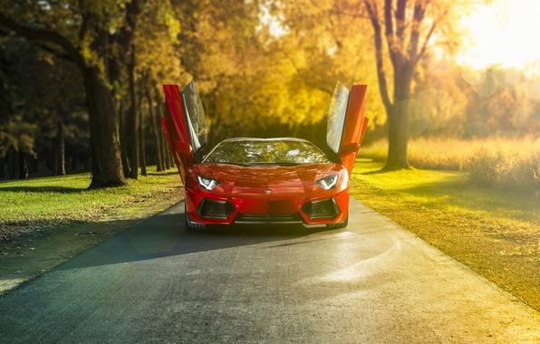 Картинка Roadster, ламбо, supercar, ламборгини, автообои, Lamborghini Aventador, LP-700-4