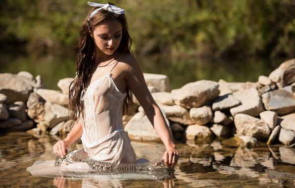 Картинка вода, камни, сорочка, Sophia Blake, Jack Russell