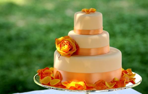 Картинка цветок, оранжевый, желтый, роза, еда, лепестки, большой, лента, сладости, торт, десерт, ленточка, вкусно