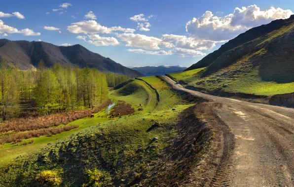 Картинка дорога, пейзаж, зеленая трава, перспектива, Горный Алтай, Бантуризм, путешествие Мобиба, мобильная баня Mobiba
