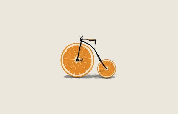 Картинка велосипед, велик, апельсин, минимализм, вектор, колеса, дольки, иллюстрация