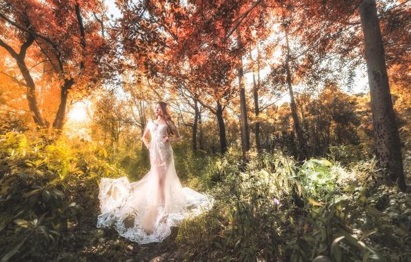 Картинка лес, девушка, стиль, платье, прогулка, азиатка