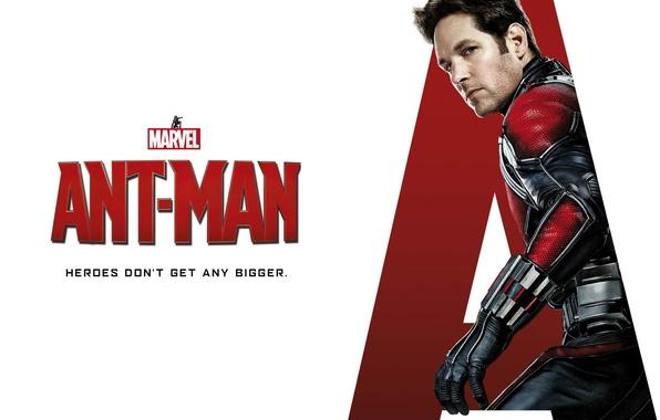 Картинка фантастика, костюм, белый фон, постер, супергерой, комикс, MARVEL, Walt Disney Pictures, Человек-муравей, Paul Rudd, Пол ...