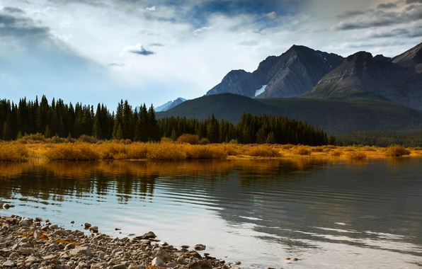 Картинка осень, лес, небо, облака, деревья, горы, озеро, голубое, Канада, Альберта, Alberta, forest, Canada, sky, trees, …