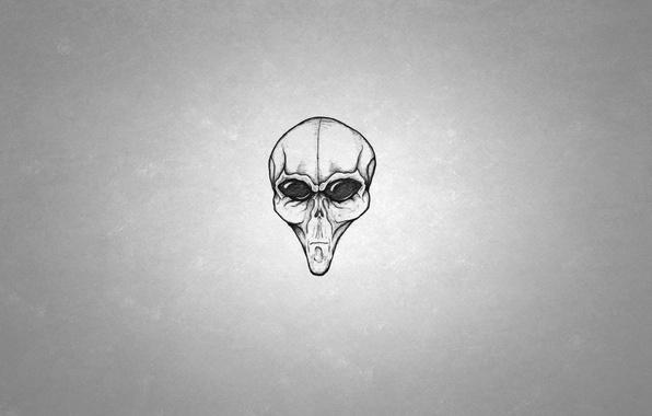 Картинка голова, чужой, инопланетянин, пришелец, alien, черно-белый фон