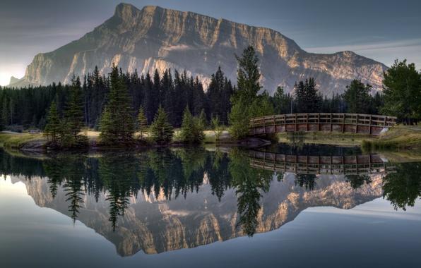 Картинка лес, мост, отражение, река, гора