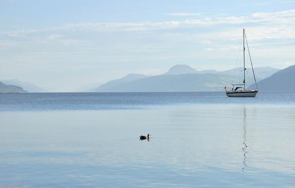 Картинка небо, горы, озеро, лодка, яхта, утка